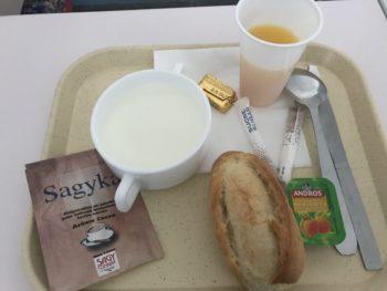 フランスの病院食 入院生活